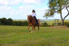 Mit meinem Pferd Bandit bin ich am liebsten in den Wäldern des Bliesgaus unterwegs.